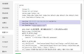 宝塔面板反向代理域名IP变化时无法访问