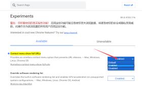 Chrome显示完整URL和HTTP协议