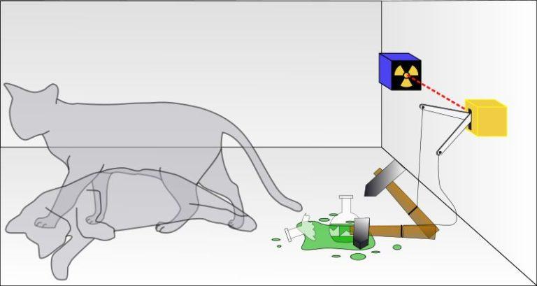 薛定谔的猫通俗解释