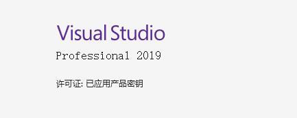 Visual Studio 2019 Key插图